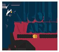 Nicole Marie Business Authority Logo